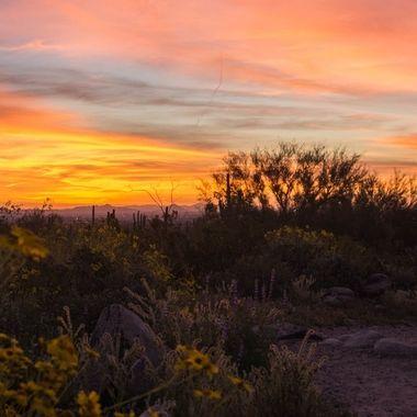 Sunrise at White Tanks - Near Goat Camp Trailhead