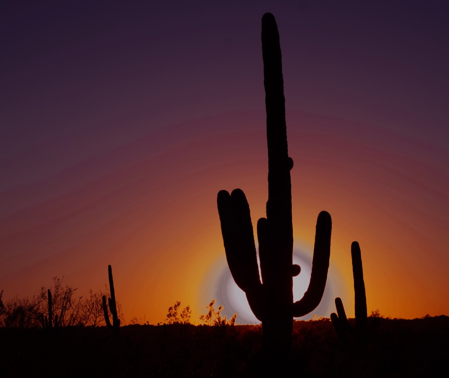 This is a sunset recorded at Saguaro National Park, East.   I looked for the location where the sun would set behind the giant David to Cactus. The wait was about an hour.