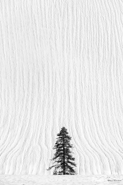 Boulders_Snow_Feb12_2017_Watermark