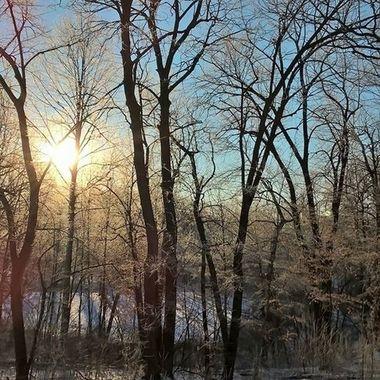Frosty Minnesota Morning