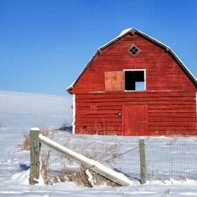 This barn stood out against the snow. Shot was taken in the Priddus area of Alberta.