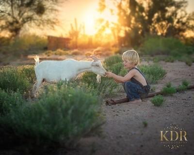 Little Jake Had a Farm