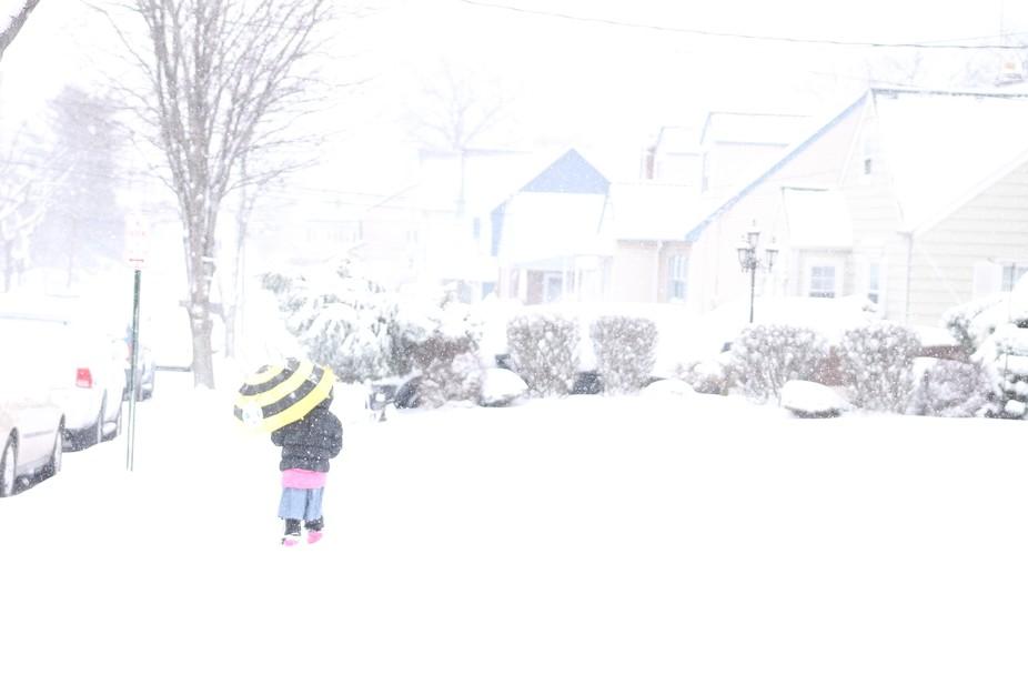 snow 201700001393
