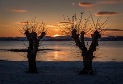 Sunset at Huk beach, Oslo