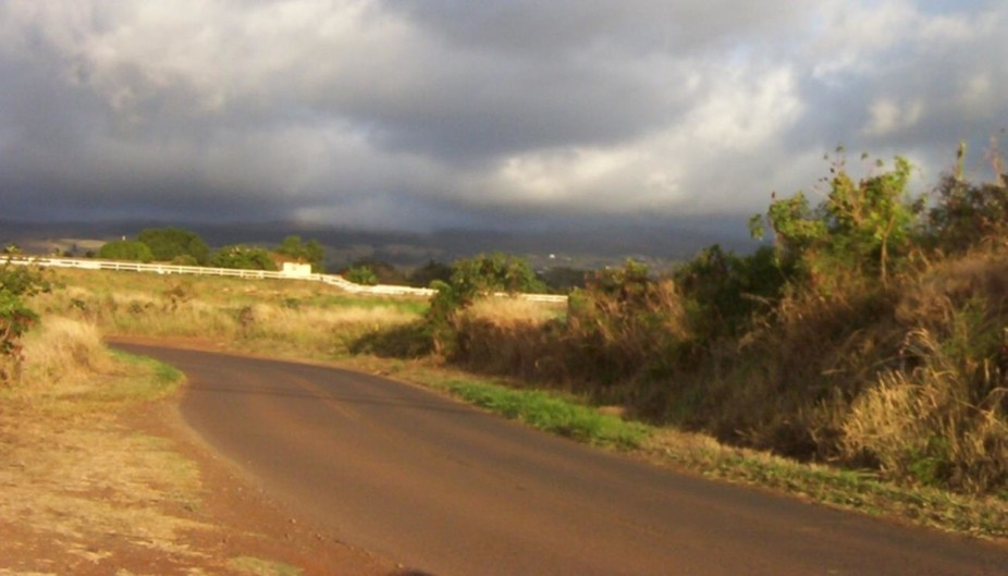 Heading up to Pukalani through the sugar cane fields to go home.