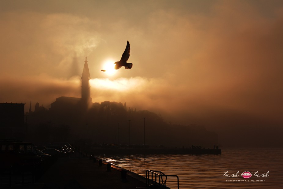 Beautiful mist in Rovinj.