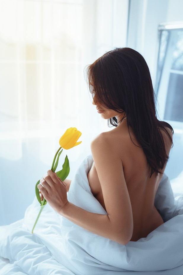 Morning tulip by Andrii_Kazun - Sexy Photo Contest