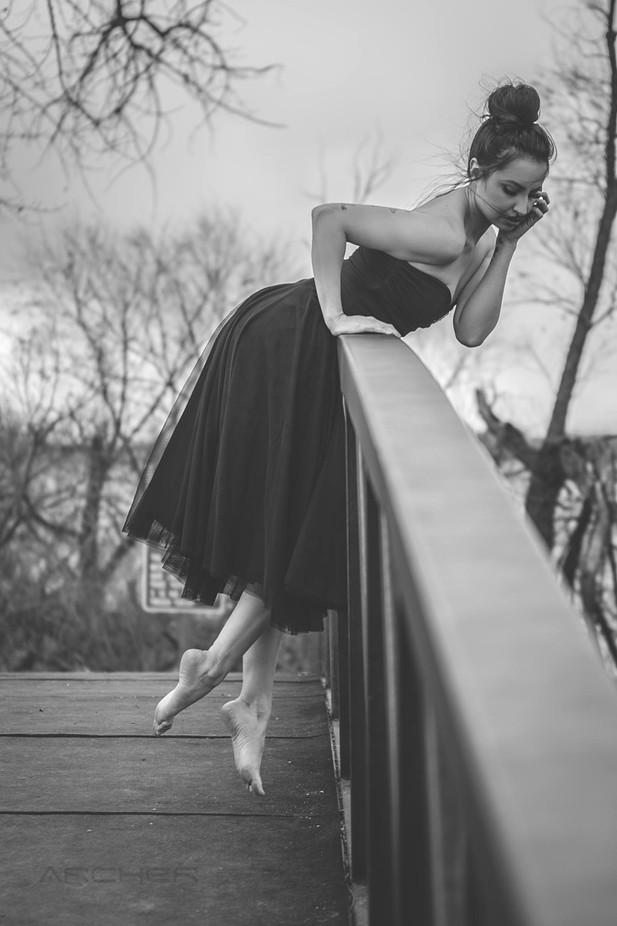 Twinkle  by mattarcher_7110 - Lets Dance Photo Contest