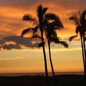 I live 5 minutes away from the beach, and I always get inspired by the golden sunset in Waianae, Oahu, Hawaii