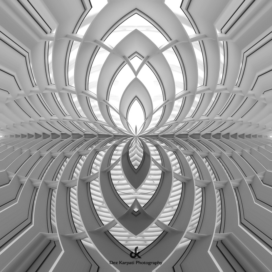 Kaleidoscope of Life XII by dezkarpatiphotography - Patterns In Black And White Photo Contest