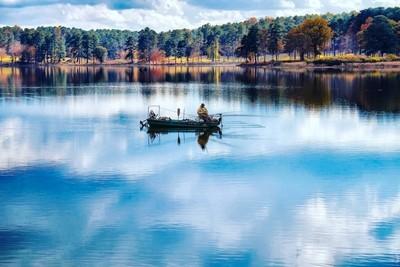 Lake Acworth Ga