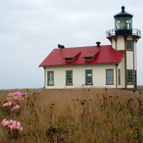 Naked Lady Flowers and Lighthouse
