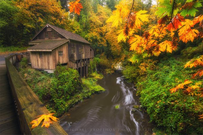 Enveloped in Fall by michaeltrofimov - Streams In Nature Photo Contest