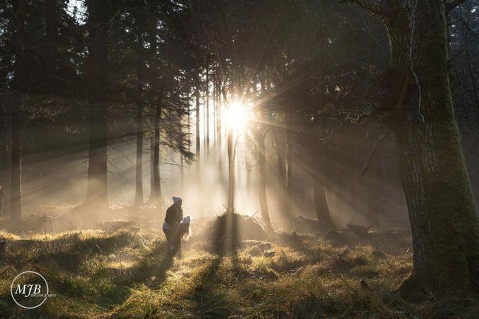 by mattbenham - A Walk In The Mist Photo Contest