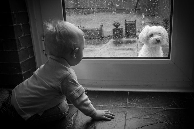 Martin & dog  by Tommyshot - Opposites Photo Contest