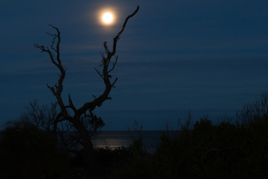 It was the night of the super moon however from my part of the world there was nothing too super ...