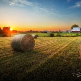 Last rays of sunset illuminate the new hay bales, pasture and background barns.