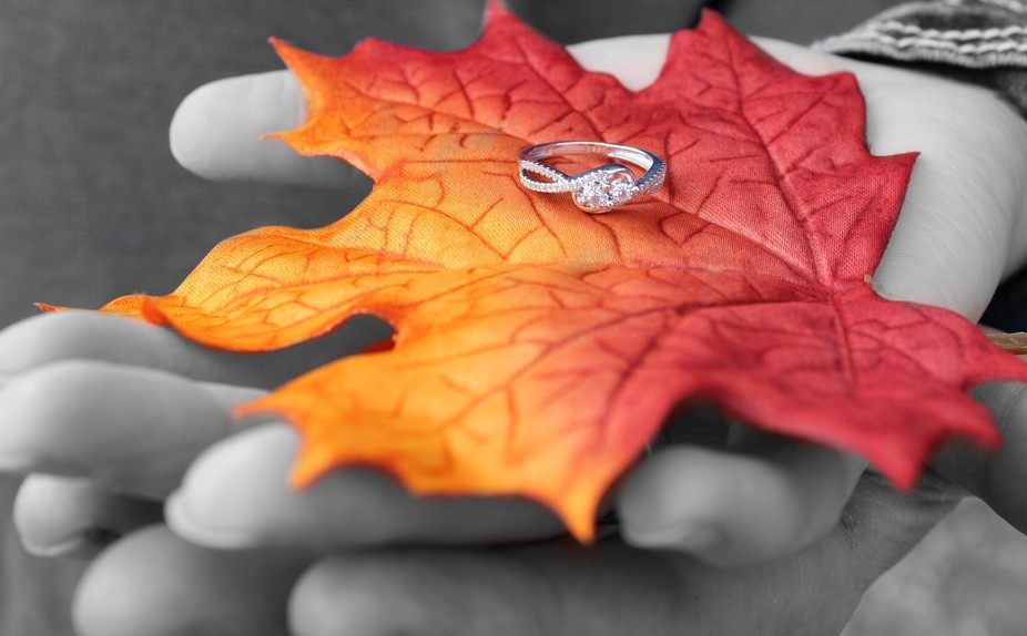 I got the honor of taking my best friends engagement pictures! Her Fiancé asked me to be there w...