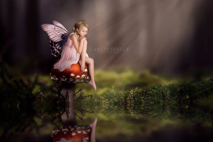 'Peaceful Contemplation' by CarleyShellyPhotoArtistry - Post Editing Magic Photo Contest