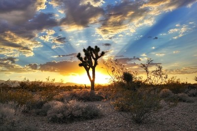 Shot taken in NW Las Vegas area, one of my favorite places to watch the sunset. I used my friends Canon EOS 5D Mark II.