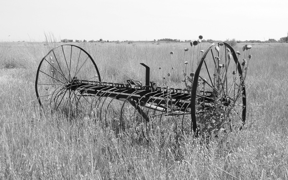 Just a drive in the country and stumbled on to some old farm equipment out by the road.