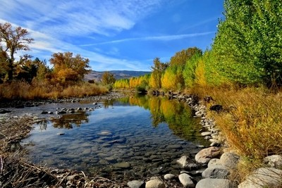 Color Along The Truckee River.