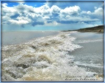Acadian waves
