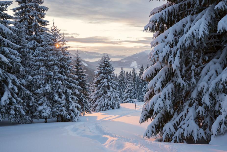 Sunrise in the Carpathian mountains. Ukraine.