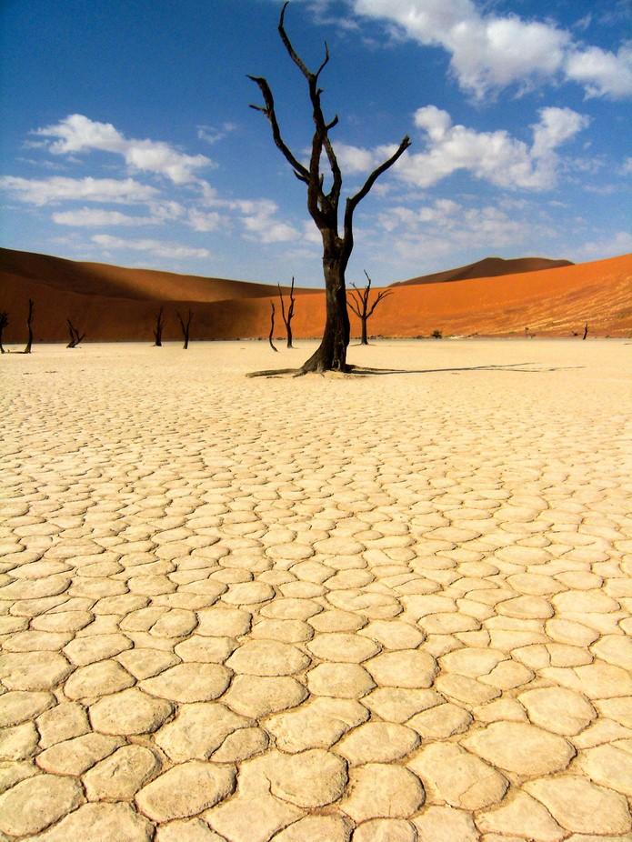 Namibia - Deadvlei by adriennexplores - Stunning POV Photo Contest