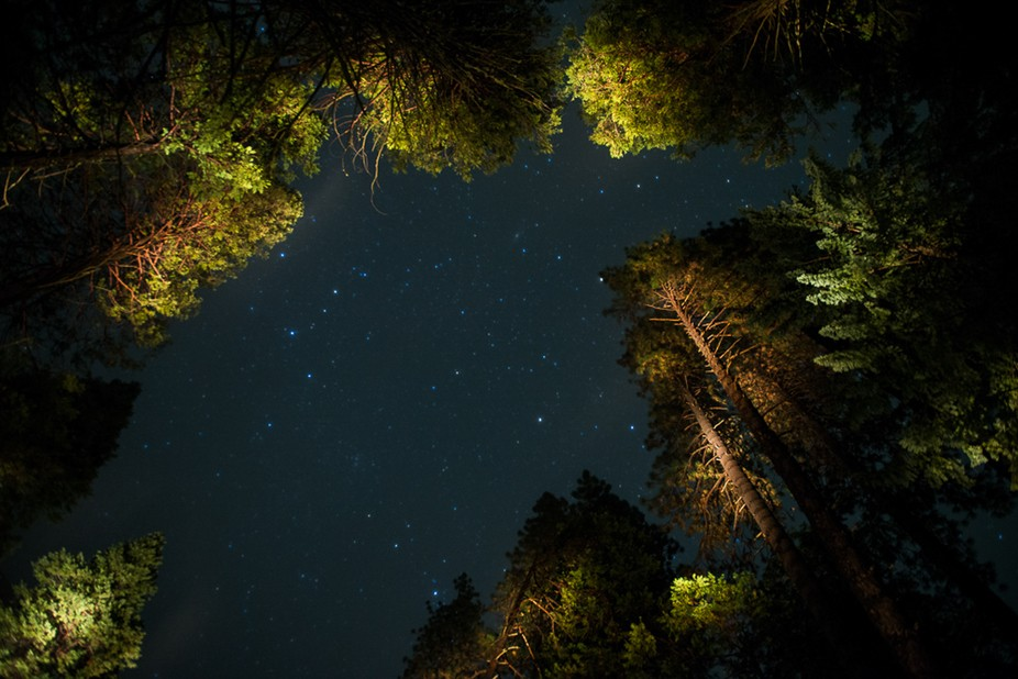 Light Painting the Starry Night in the Yosemite Valley.