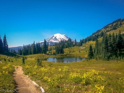 On The Naches Loop