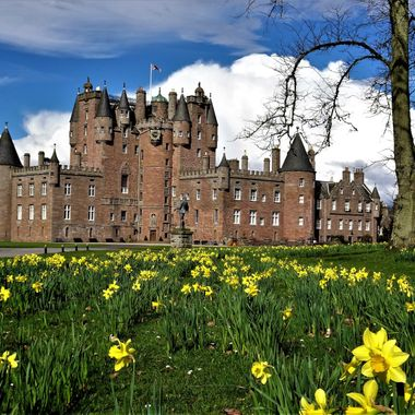 The Castle Looking impressive with the newly flowering Daffodils