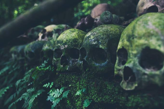 Ancestors by iwangroot - Shallow Depth Of Field Photo Contest
