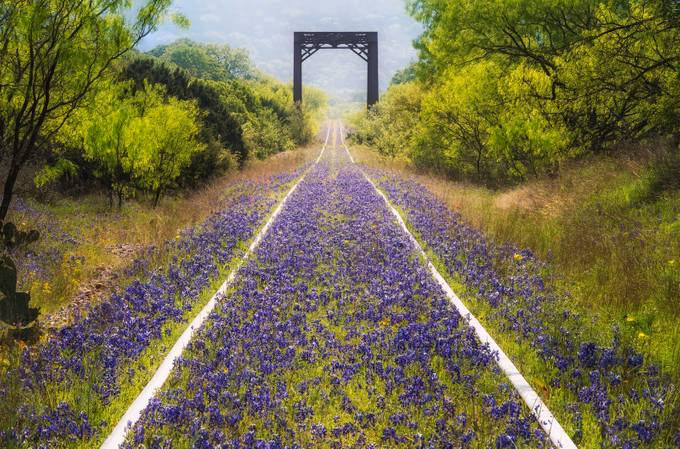Rails of Color by jfischerphotography - Empty Railways Photo Contest