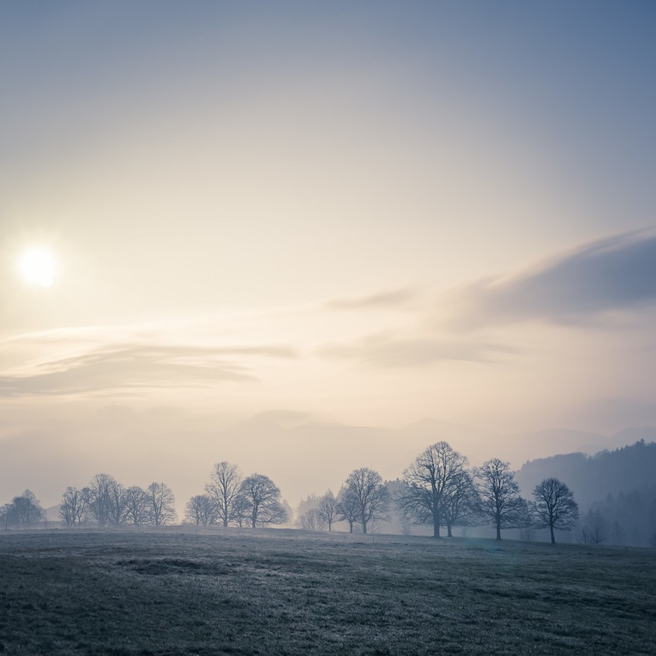 Morning Dew by followinglight - Overexposure Photo Contest