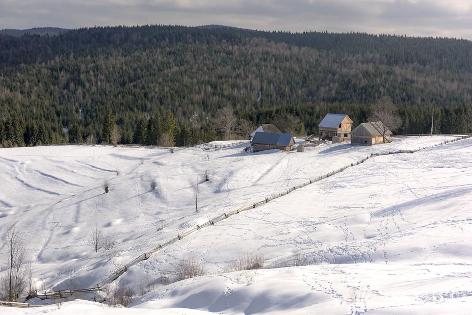 Snow waves of the Carpathians