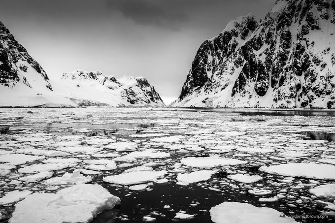 Antarctica by Forrest_Brown - Patterns In Black And White Photo Contest