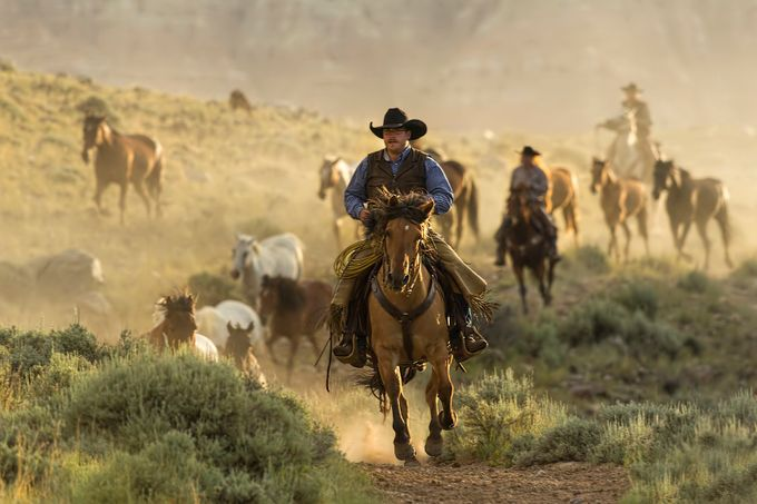 Wrangling the Horses At Sunrise by KayBrewer - People And Animals Photo Contest