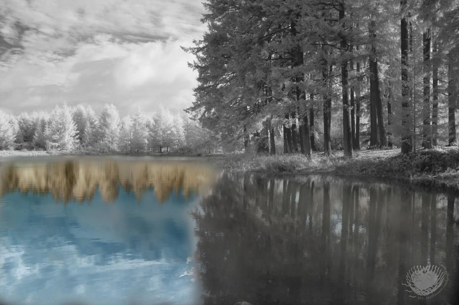 Amelia's Lake