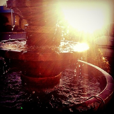 a splash of sunshine in the water fountain is what makes it a beautiful day❤️ #beautifulday #fountain #waterfountain #water #sunshine #raysofthesun #morning #daylight