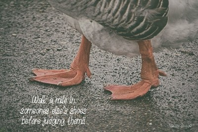 Walk a Mile...