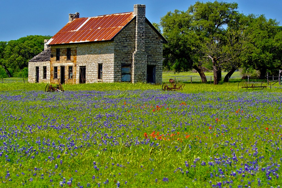 A beautiful old abandoned farm house...which has not been forgotten by Mother Nature...Spring wil...