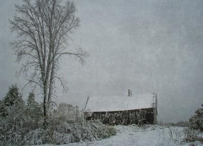 winter house 2