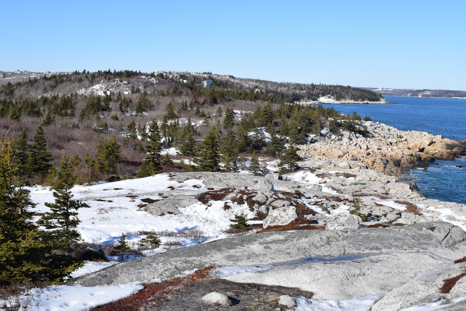 This photo captures the essence of Nova Scotia's terrain; rocky with lots of granite.