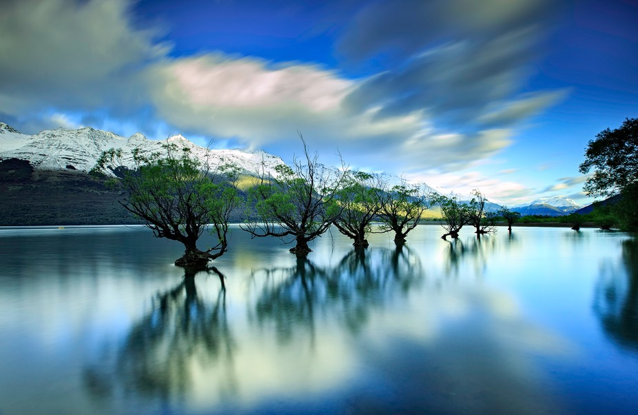 Glenorchy Willows