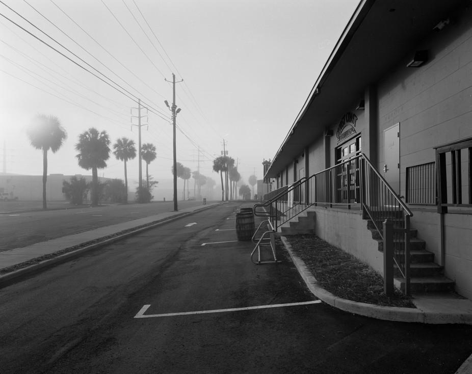 Negative scan of 4x5 Kodak T-max 100 film.