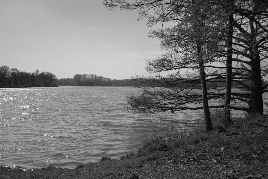 I took this by a lake in Kingsbury water park.