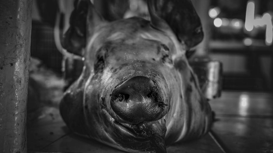 Pig head for sale at San Pedro Market in Cusco, Peru.
