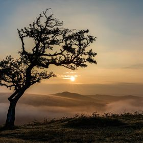 Sunrise over a hazy valley near Combestone Tor in Dartmoor National Park