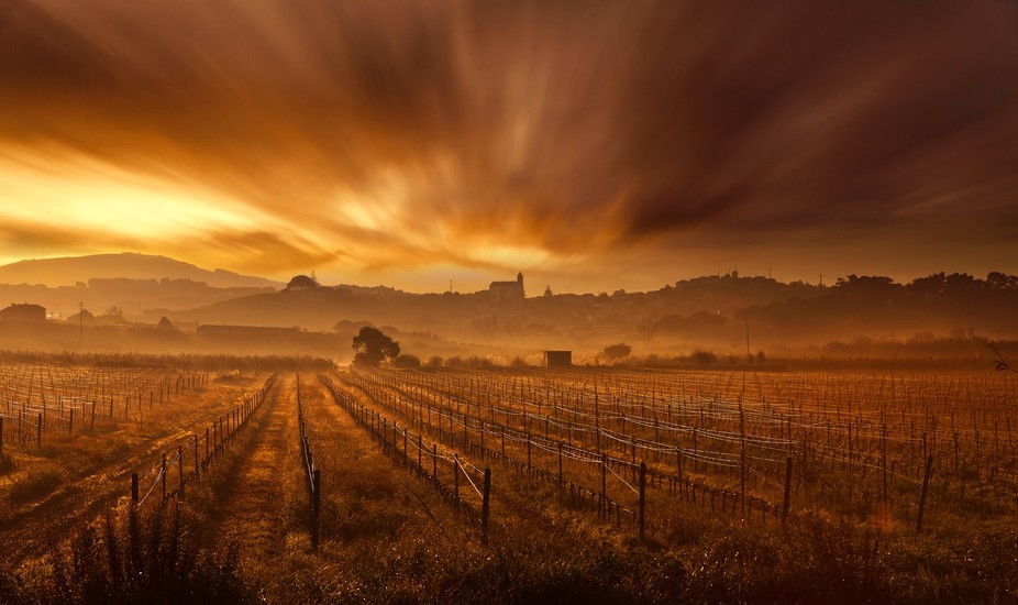 Zona Oeste, Portugal